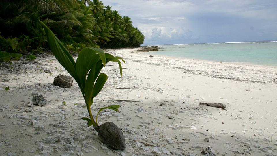 national park of american samoa swains island